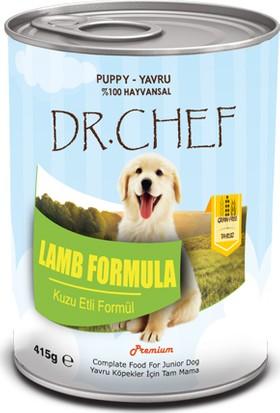 Dr.Chef Tahılsız Yavru Köpek Konserve 415 Gr