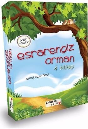 Çalışkan Yayınları 4. Sınıf Esrarengiz Orman Serisi (4 Kitap)