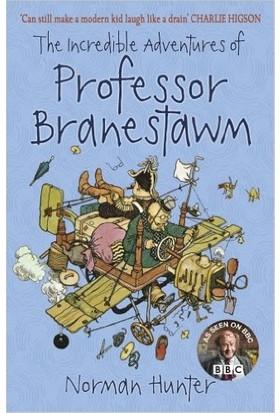 The Incredible Adventures Of Professor Branestawm - Norman Hunter