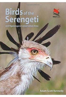 Birds Of The Serengeti And Ngorongoro Conservation Area - Adam Scott Kennedy