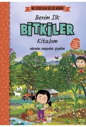 Ne Sorsan Bilir Minik Benim İlk Bitkiler Kitabım - M. Sacide Kafalı