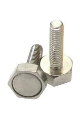 Poolline Ni̇kel Magnet Manyeti̇k Vi̇da 14 mm 5'li̇ Set