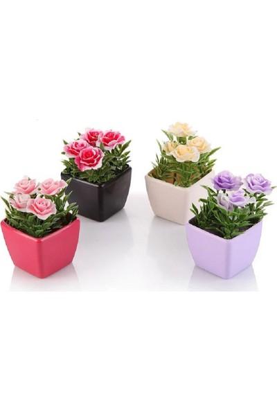Tuğra Hediye Yapay Çiçek Minik Saksılı