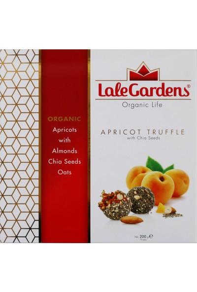 Lale Gardens Organik Kayısı Trüfü 200 gr