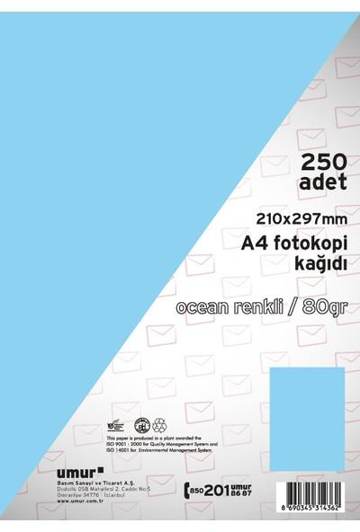 Umur Fotokopi Kağıdı A4 80Gr Renkli 0Cean 120
