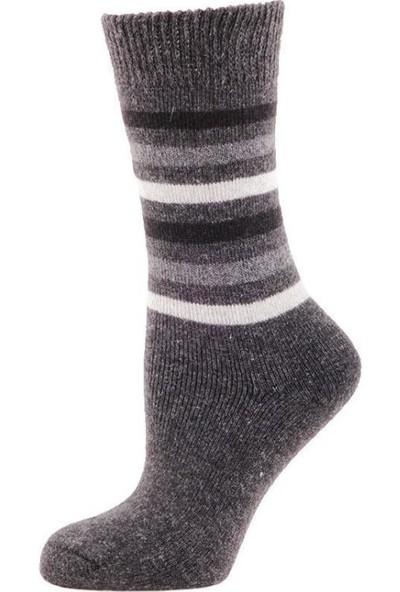 Panthzer Casual Wool Erkek Çorap Gri