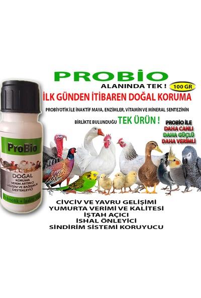 Vermx-Tr Probio - Tavuk Civciv Kaz Keklik İçin Sindirim Sistemini Düzenleyici Probiyotik