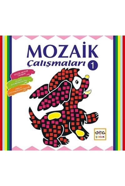 Mozaik Çalışmaları -1