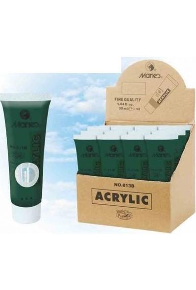 Maries Akrilik Boya Sap Green 30 Ml. 12 Li 568 813B (1 Paket 12 Adet)