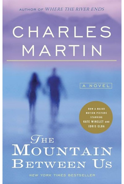 The Mountain Between Us - Charles Martin