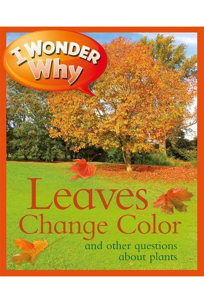 I Wonder Why The Leaves Change Color - Andrew Charman
