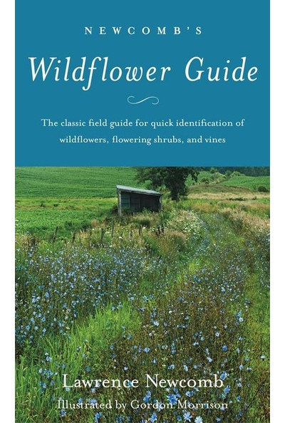 Newcomb's Wild Flower Guide - Laurence Newcomb