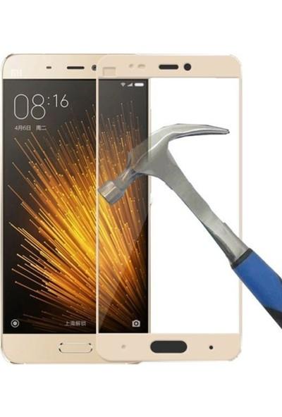 Case Street Xiaomi Mi 5 Full Kapatan Renkli Cam Gold