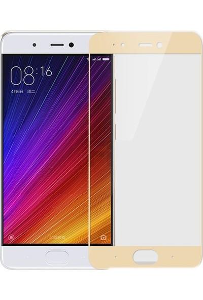 Case Street Xiaomi Mi 5s Plus Full Kapatan Renkli Cam Gold