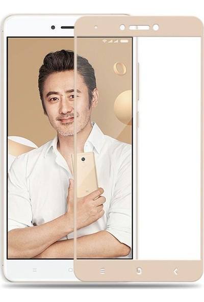 Case Street Xiaomi RedMi Note 4X Full Kapatan Renkli Cam Gold