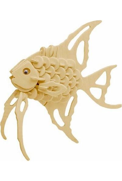 Piramigo 3D Ahşap Maket Melek Balığı