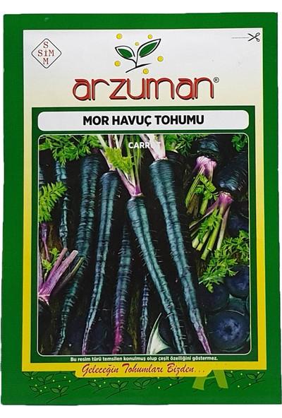 Arzuman Mor Havuç Tohumu 10 g