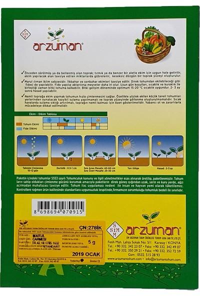 Arzuman Marul Tohumu Kırmızı Kıvırcık 5 g