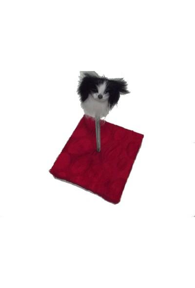 Dali̇'s Yaylı Peluş Kedi Oyuncağı