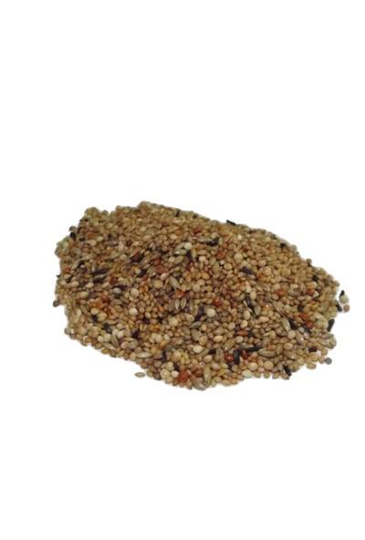 Naturel King Hi̇nt Bülbülü Golden Fi̇nch Yemi̇ 1 kg