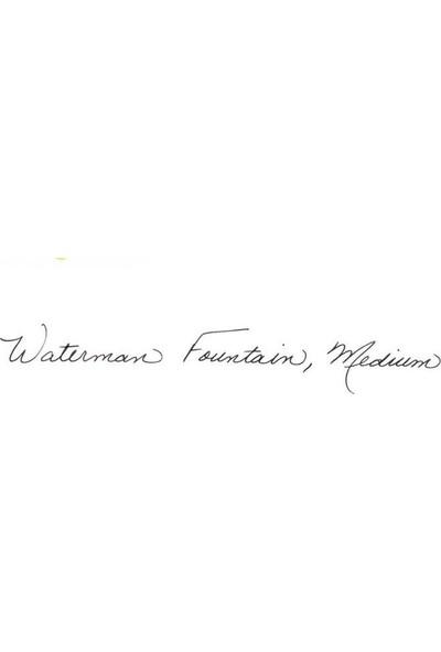 Waterman Siyah Expert Deri Kılıf Hediyeli Gt Dk W2019844