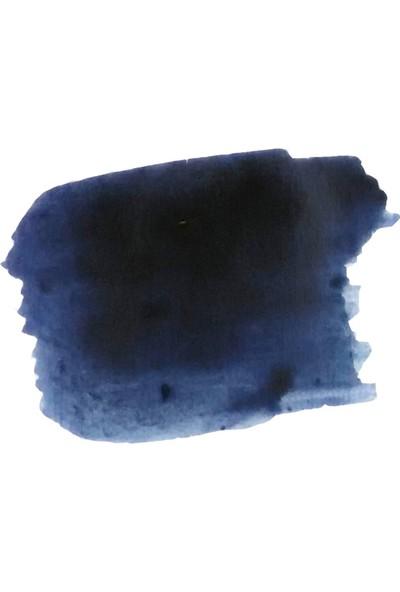 Krishna Kot Massi Series Permanent Blue Black Iron Gall Mürekkep
