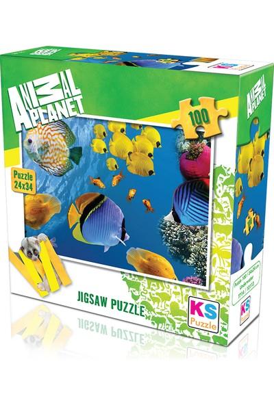 KS Games Animal Planet   Underwater