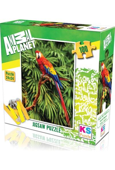 KS Games Animal Planet   Scarlet Macaw