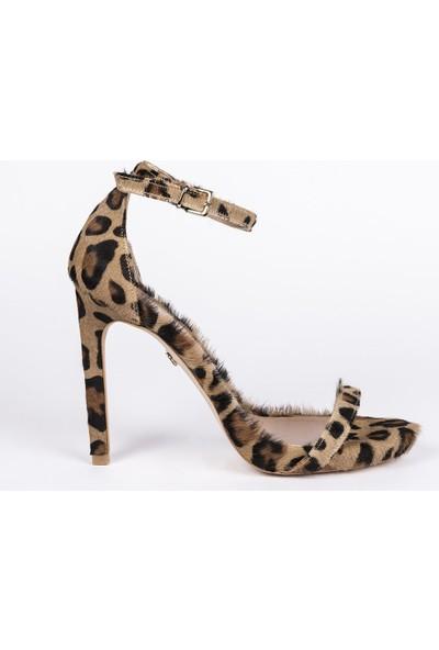Jabotter Elegant Leopar Tay 12 Cm Topuklu Ayakkabı