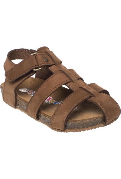 Toddler 4676 Tek Toka Tarçın Çocuk Sandalet