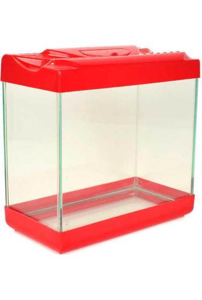 Woddy Plastik Kapaklı Cam Akvaryum 22 cm