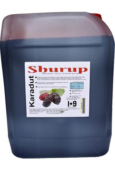 Shurup Konsantre Meyve Aromalı İçecek 6 kg 2 Karadut - 2 Vişne