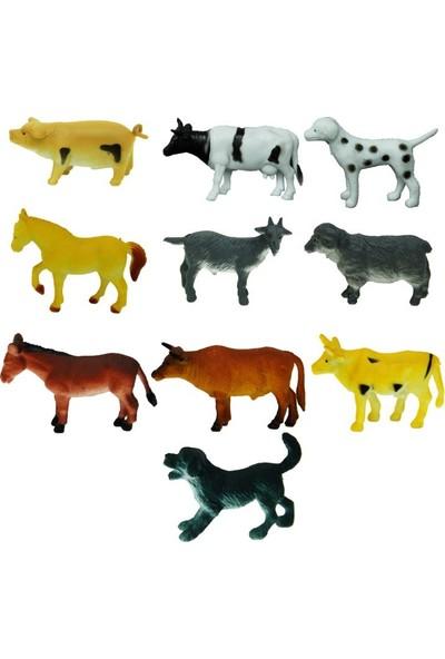 Sunman Çiftlik Hayvanları