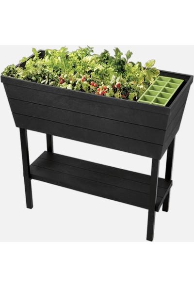 Ktr Ayaklı & Raflı Bitki Yetiştirme Saksı