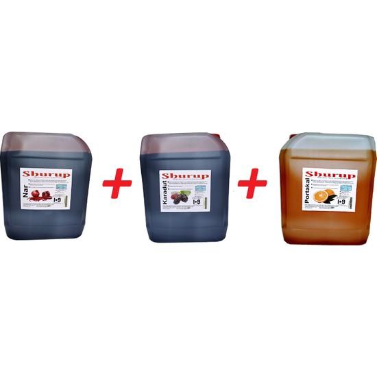 Shurup Konsantre Meyve Aromalı İçecek 6 kg Portakal + Karadut + Nar ( 3' lü)