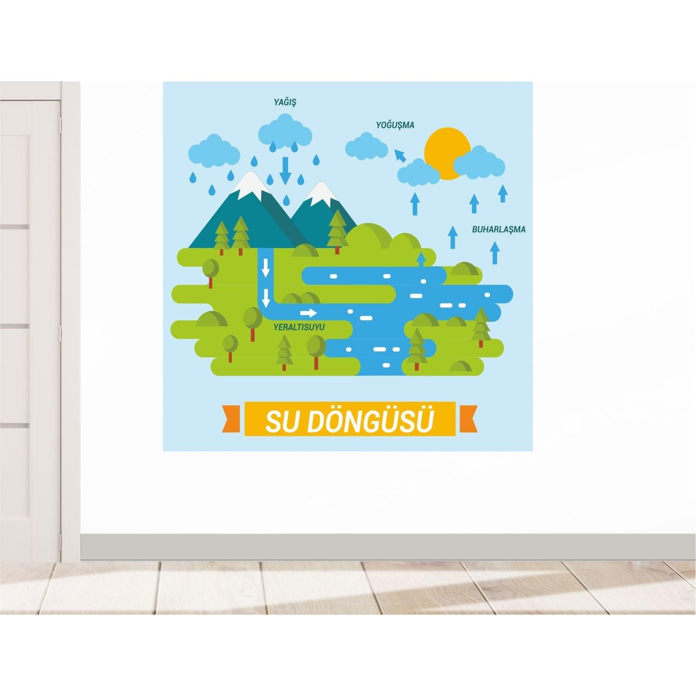 Okulposteri Su Dongusu Posteri 4 50 X 50 Cm Fiyati
