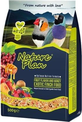 Nature Plan Meyve Aromalı Ve Ballı Egzotik Finch Yemi 500 Gr