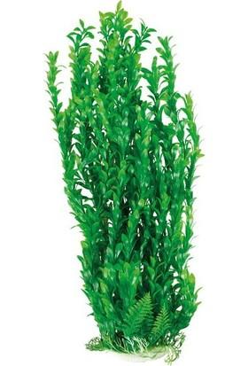 Aquatic-Plants Yeşil Akvaryum Plastik Bitki 65 Cm