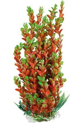 Aquatic-Plants Yeşil-Turuncu Akvaryum Plastik Bitki 43 Cm