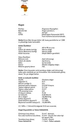 İntersystem Coffee Konfor Delüks İç Mekan Koltuk Duo Set By