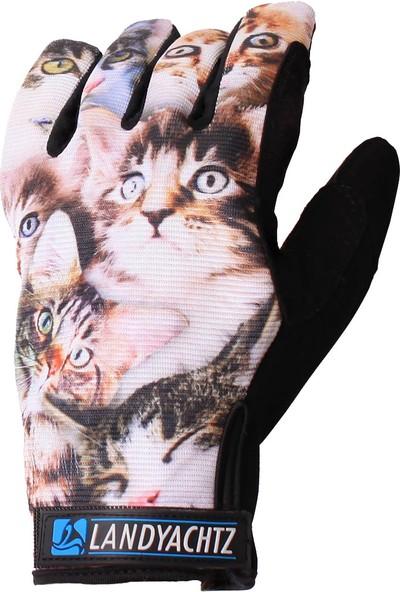 Cat Slide Glove