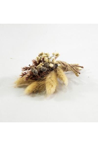 Eva Flore Natüral Yaka Çiçeği