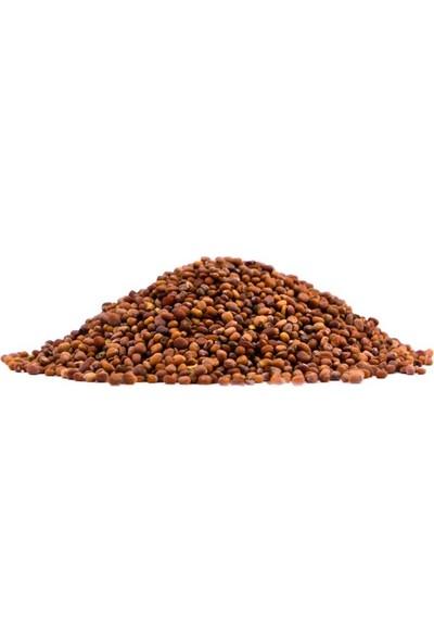 Atasagun Şifa Turp Tohumu 100 gr