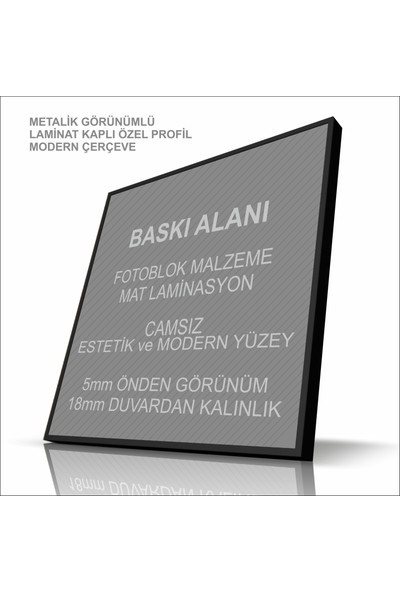 Stüdyo Neo Kuş - Modern Çerçeveli Duvar Tablosu - Metalik Görünümlü Ahşap Estetik Çerçeveli