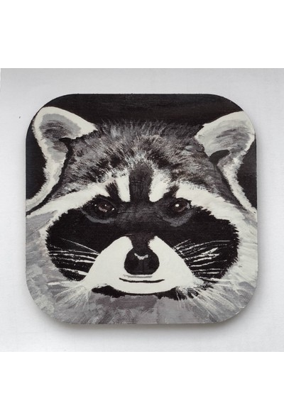 Artmuguet Raccoon Who Knows What You Did Metal Yüzeyli Bardak Altlığı