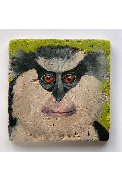 Artmuguet Gray-Haired Monkey Taş Bardak Altlığı