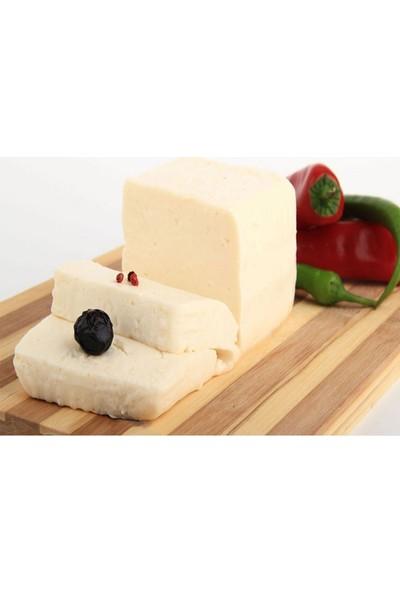 Zeytindalı Çanakkale Ezine İnek Peyniri 1 kg