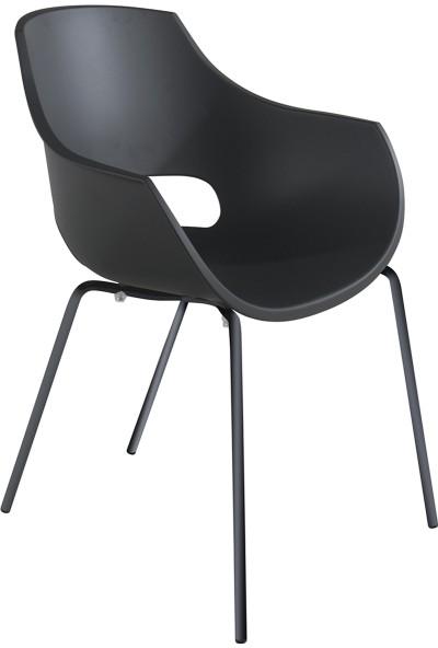Papatya Opal Pro Sandalye Antrasit-Antrasit