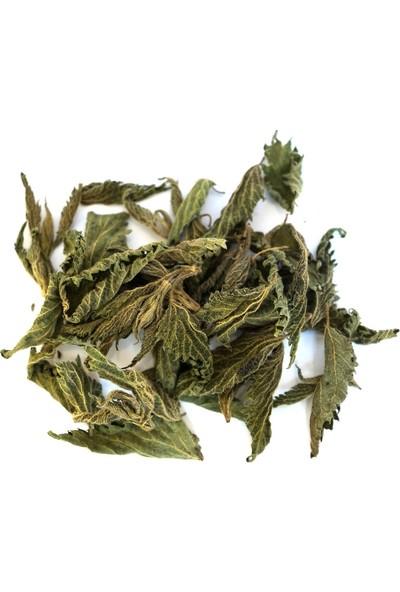 Şifamarketim Kurutulmuş Isırgan Otu Yaprağı 150 gr