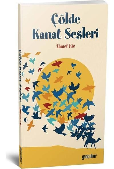 Çölde Kanat Sesleri - Ahmet Efe